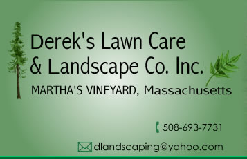 Lawn Care and Landscape